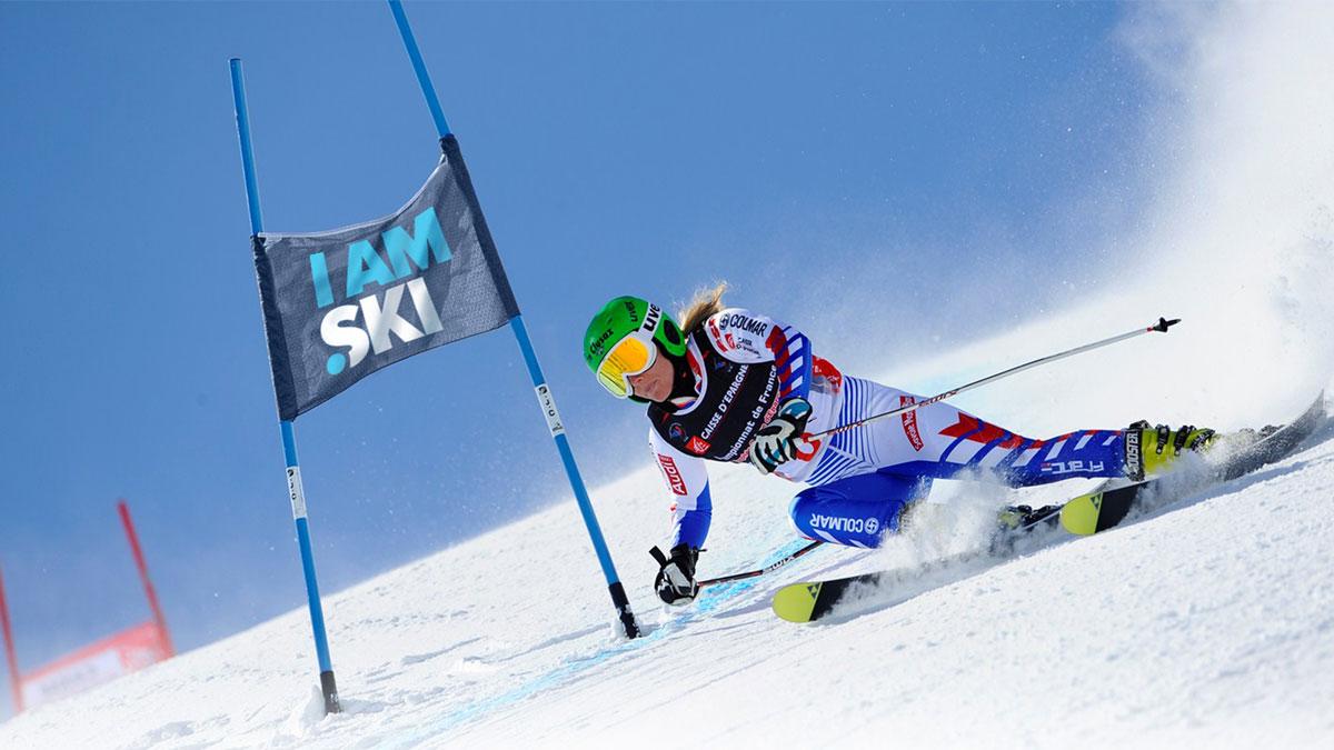 fanion .ski