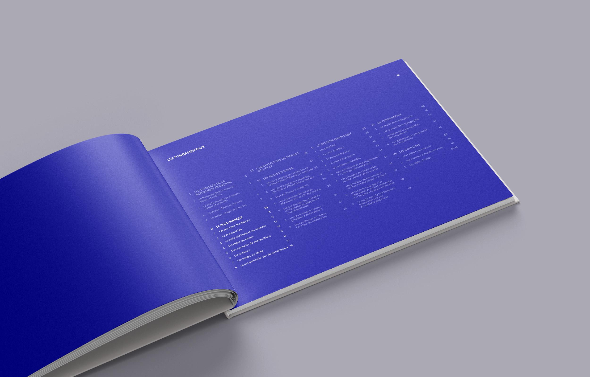 Mockup de charte graphique de l'État sur la page sommaire