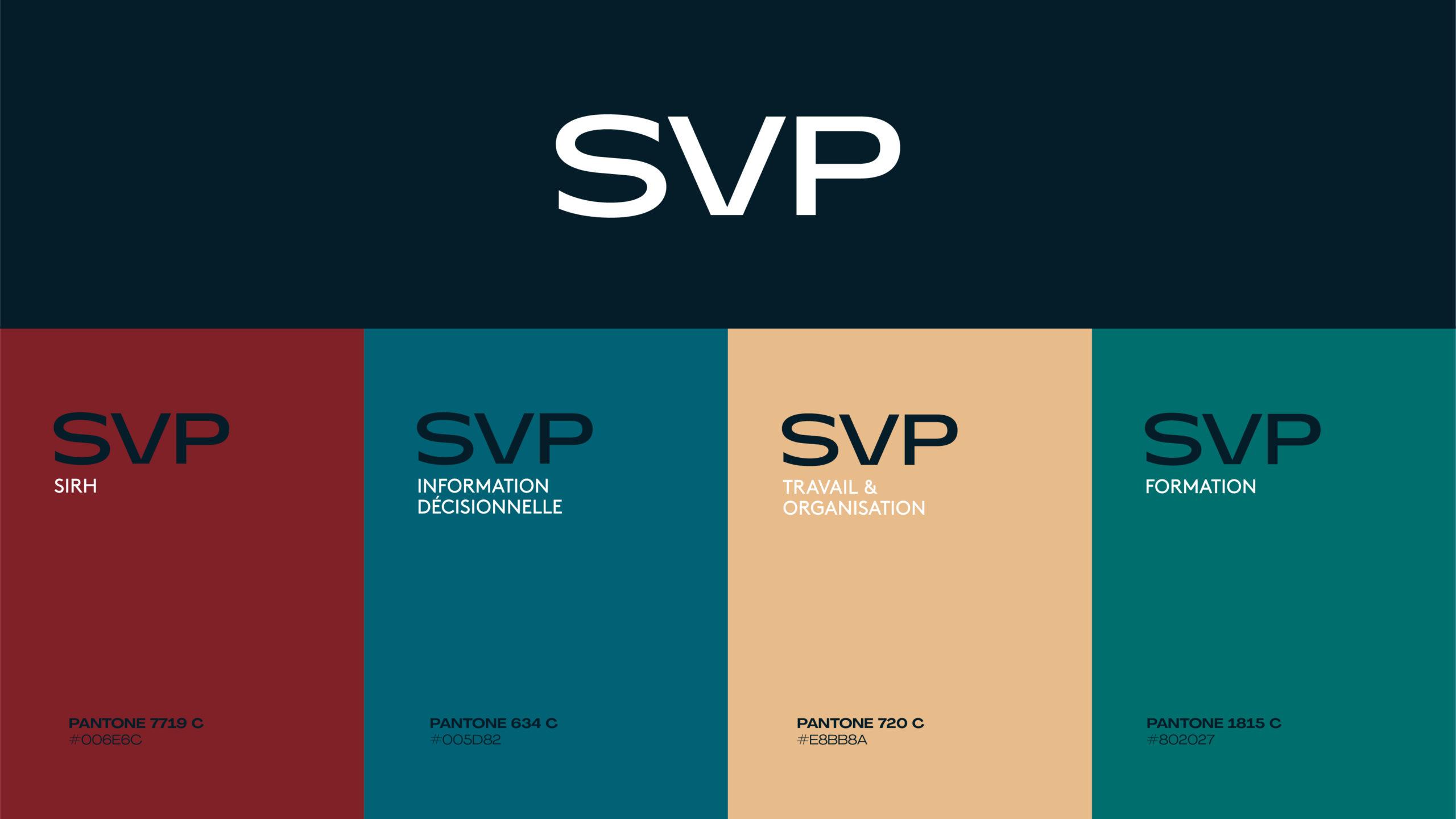 Les différentes branches du groupe SVP
